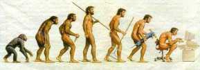 Del Homo Habilis al Homo Digitalis