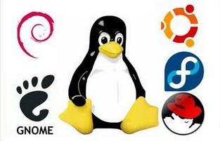 Software libre: Wikipedia, Stallman, Linux y el futuro