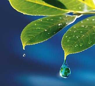 La lluvia, fuente de vida y motivo de reflexión