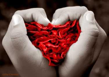 El amor, ese sentimiento que nos hace cometer locuras y decir boberías
